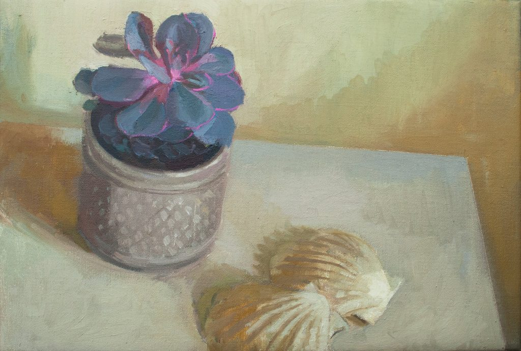 "Ilaria Rosselli Del Turco - Still Life with Shells - Oil on Linen - 12"" x 16"""